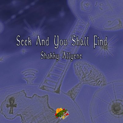 Seek And You Will Find-Shakky